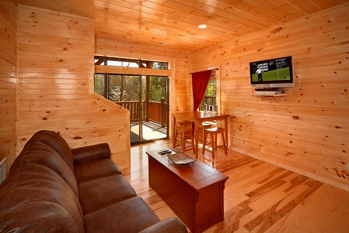 Spacious Cabin with Flat Screen TV's - 4 Your Pleasure