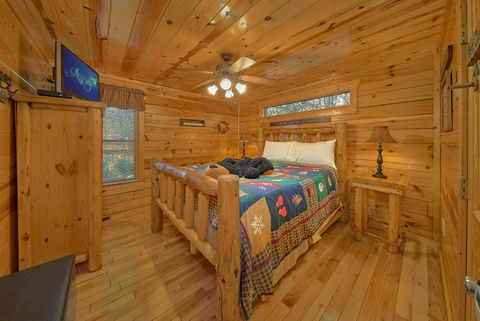 Cabin with Fireplace - A Bear Encounter