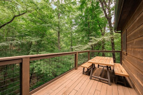Luxury 2 Bedroom Cabin with Wooded View - A Bear's View