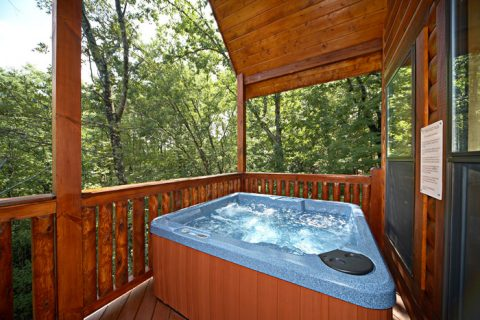 Hot Tub on Deck - A Friendly Forest