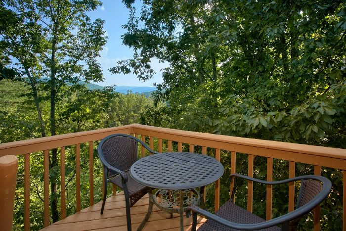 3 Bedroom Cabin with Private Deck and View - A Ruff Life