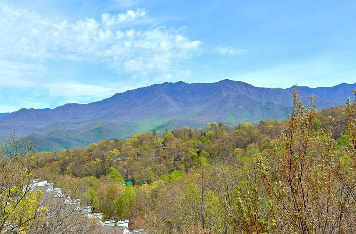 A Spectacular View to Remember Cabin Rental Photo