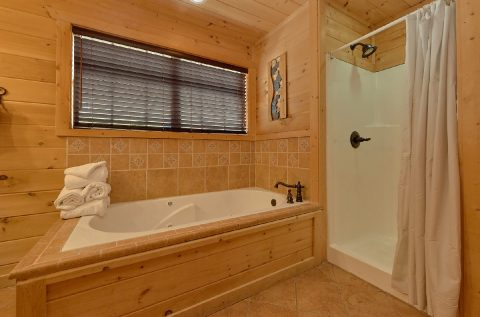 Luxury cabin with Master bath on the main level - A Spectacular View to Remember
