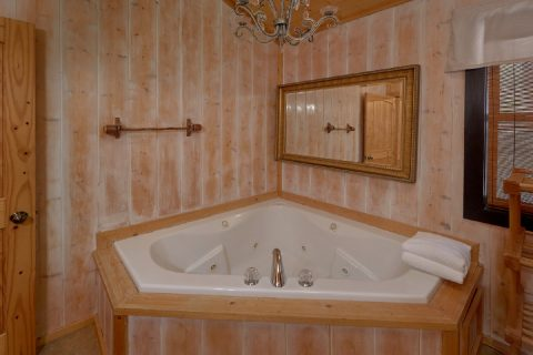 5 bedroom cabin with 2 Jacuzzi Tubs - A Stunning View