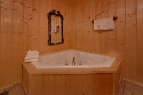 Luxury cabin with 4 Private Jacuzzi Tubs - A Stunning View