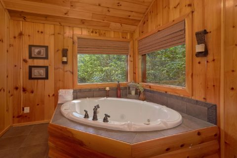3 bedroom cabin with private jacuzzi tub - A Tennessee Delight