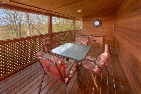 Screened in Porch with Sitting Area - A Wolf's Den