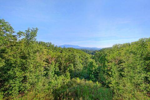 Beautiful Mountain Views from 4 bedroom cabin - Absolutely Viewtiful