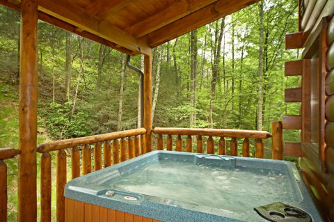 Smoky Mountain Cabin Rental with Hot Tub - Adler's Ridge