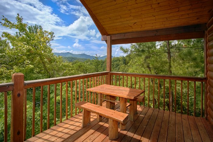 Premium Cabin with Mountain View & Picnic Table - Ain't No Mountain High Enough