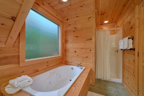 Luxury Cabin with 3 Jacuzzi Tubs & Private Baths - Amazing Views to Remember