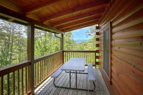 2 Bedroom cabin with Rockers and picnic table - American Pie
