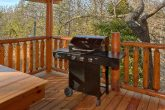5 Bedroom Cabin with Gas Grill Sleeps 17