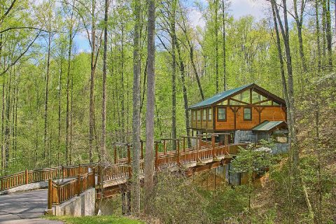 Private Luxurious 2 bedroom cabin in Gatlinburg - Bear Paw Bridge