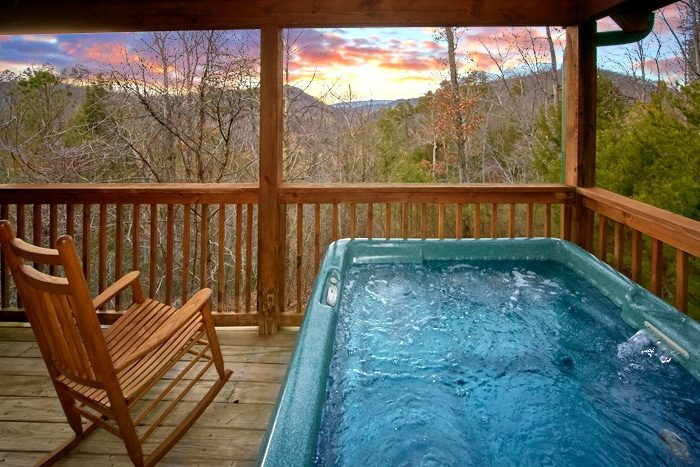 Secluded Honeymoon Cabin with Hot TUb - Bearadise