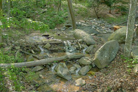 Stream - Bearadise Lodge