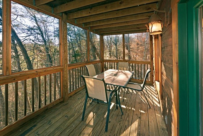 Cabin with Outside Furniture - Bear-E-Nice