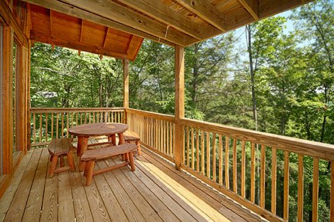 Gatlinburg 2 Bedroom Cabin with a Picnic Table - Bear-rif-ic