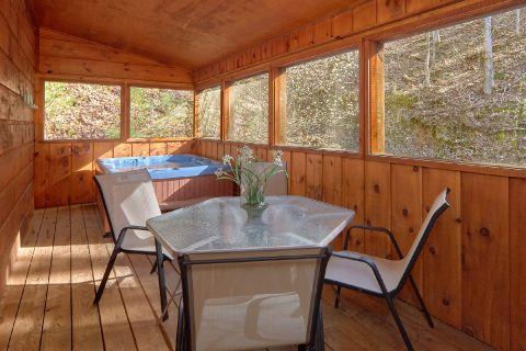 Cabin with Screened in Porch and Hot Tub - Bear's Lair