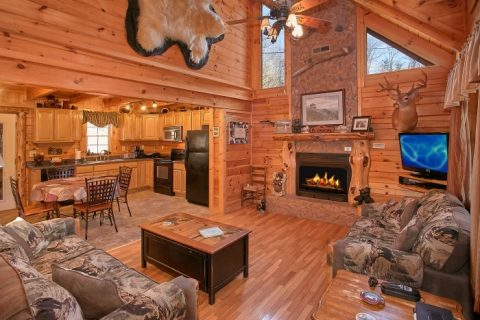 Private 2 Bedroom Cabin with Fireplace - Beary Dashing