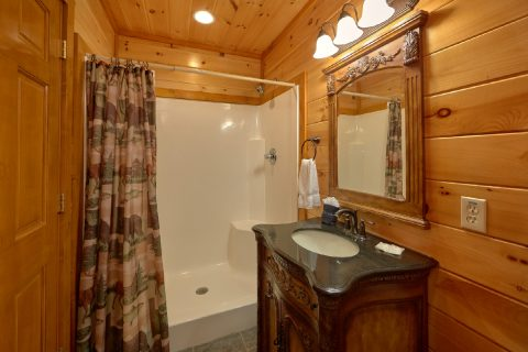 Guest Bathroom with Stand Up Shower - Best Little Pool House In The Smokies