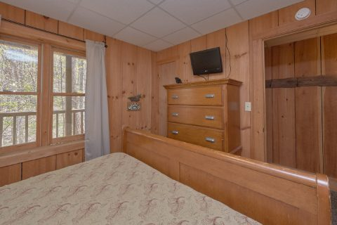 4 Bedroom 3 Bath Cabin Sleeps 12 - Black Bear