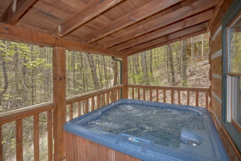 Private Hot Tub 4 Bedroom Cabin Sleeps 12 - Black Bear