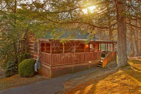 Cabin with wooded setting - Bluff Haven