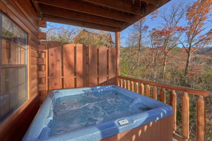 Private Hot Tub off the back of Cabin - Cheeky Chipmunk Getaway