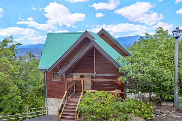 City View Chalet Cabin Rental Photo