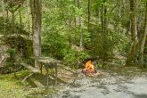 1 Bedroom Cabin with a fire pit and picnic table