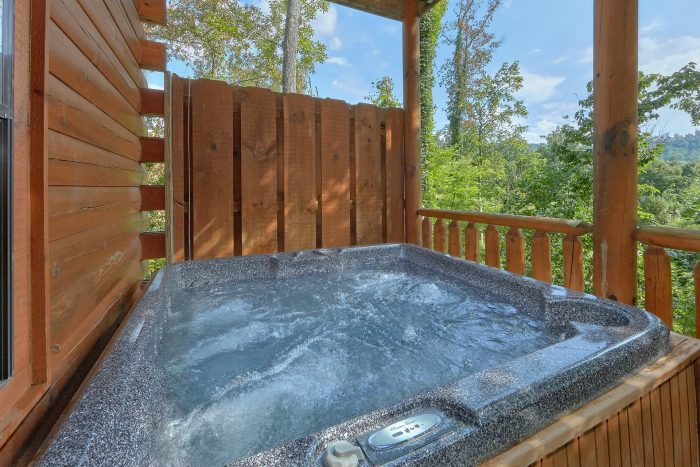 5 Bedroom cabin with Hot tub and wooded views - Deer To My Heart