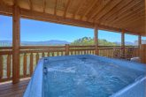 12 Bedroom cabin with hot tub and View