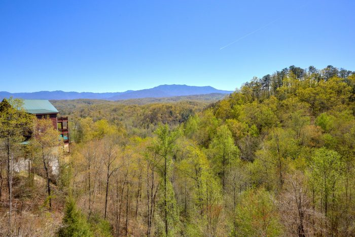Views of the Mountains from 12 bedroom cabin - Dream Maker Lodge