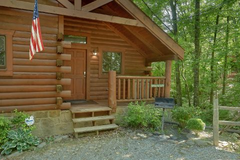 Honeymoon cabin with grill and wooded views - Dreamweaver