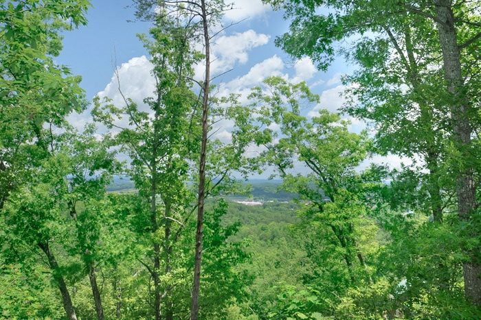 Cabin with View of The Island Pigeon Forge - Enchanted Evenings