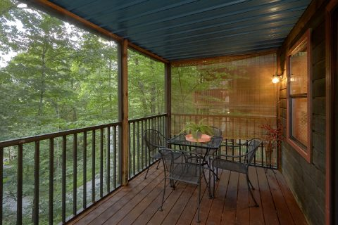 2 Bedroom Cabin with Screen in Deck - Foxes Den