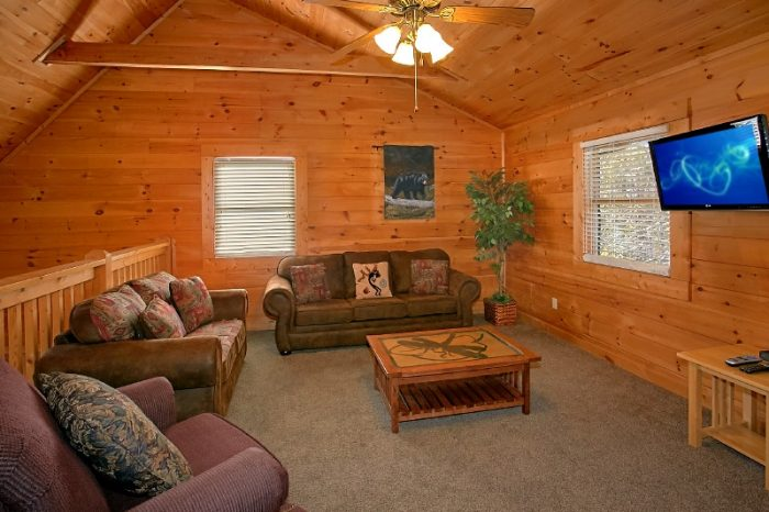 Gatlinburg 3 Bedroom Cabin Sleeps 10 - Gatlinburg Views