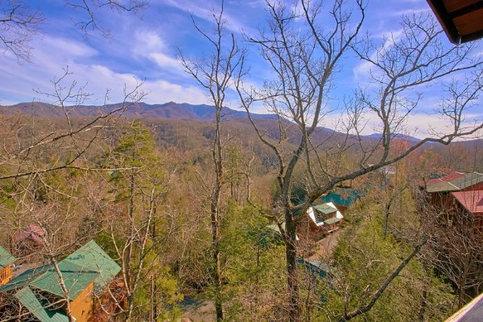 3 Bedroom Cabin with Views - Gatlinburg Views