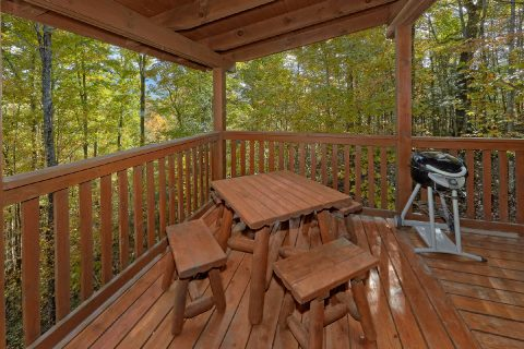 Rocking Chairs and Picnic Table - Gray Fox Den