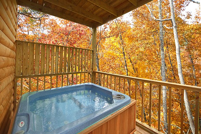 2 Bedroom Cabin with a Hot Tub - Grin N Bear It