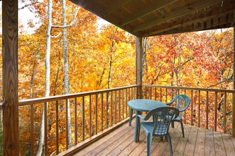 2 Bedroom Cabin with 2 Covered Decks - Grin N Bear It
