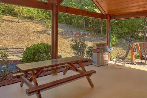 Picnic Table and Grill at 4 bedroom resort cabin - Hillbilly Hideaway