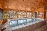 1 bedroom cabin with Private Swim Spa Pool