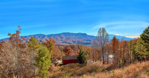 5 Bedroom 5 Bath Sleeps 14 with Views - LeConte Views
