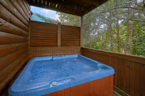 2 Bedroom Cabin with Private Hot TUb - Lil Country Cabin