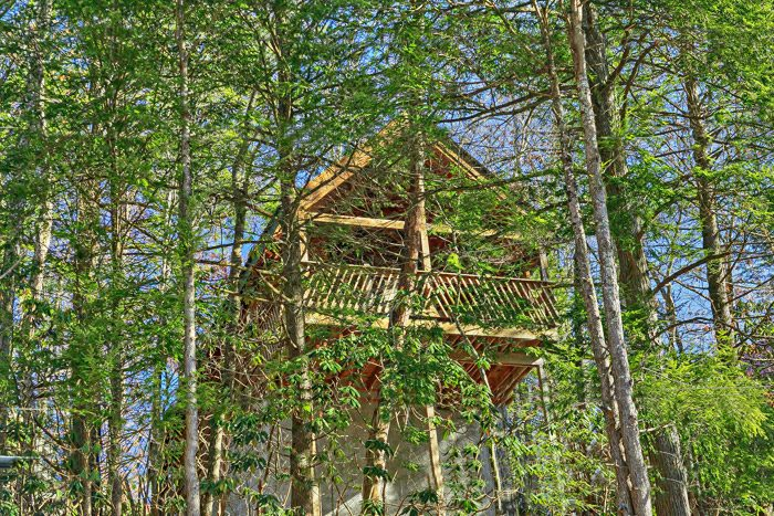 Cabin with a Wooded View - Lover's Lane