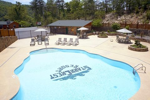 Cabin with Resort swimming pool and playground - Lucky Break