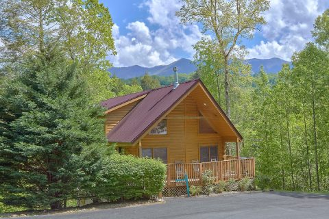 Mountain Shadows 4 Bedroom 3 Bath Sleeps 10 - Mistletoe Lodge