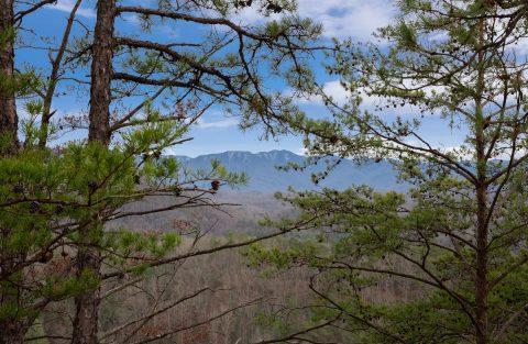 Mountain View 4 Bedroom Cabin Summit View Resort - Moonlight Getaway